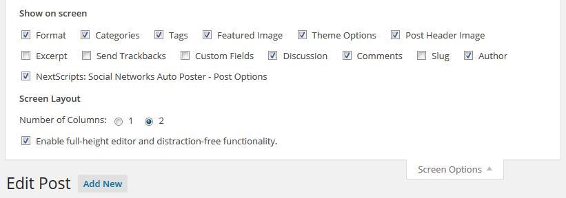 Edit Post Screen Options tab