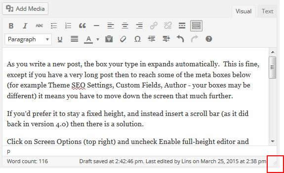 Adjust the Editor size in WordPress